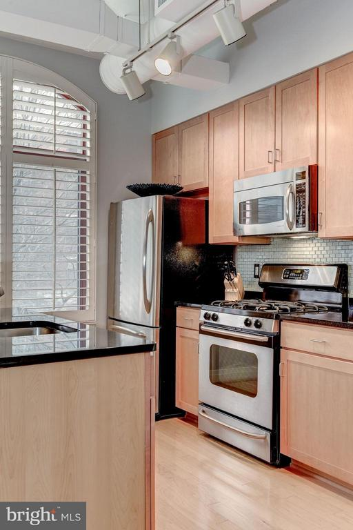 KITCHEN - STAINLESS STEEL APPLIANCES! - 1201 GARFIELD ST N #216, ARLINGTON