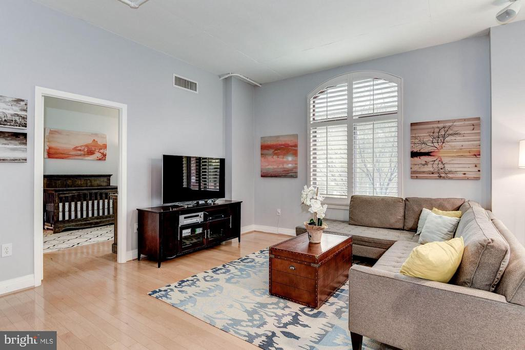 LIVING ROOM WITH HUGE, OVER SIZED WINDOWS! - 1201 GARFIELD ST N #216, ARLINGTON