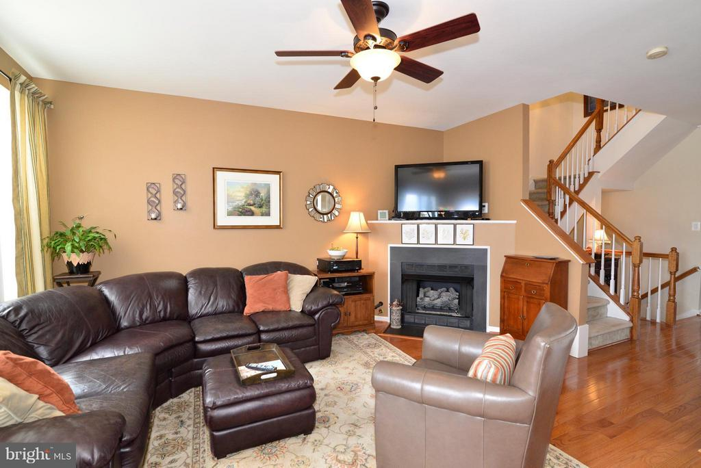 Winter movie watching is always better by a fire! - 44019 LORDS VALLEY TER, ASHBURN