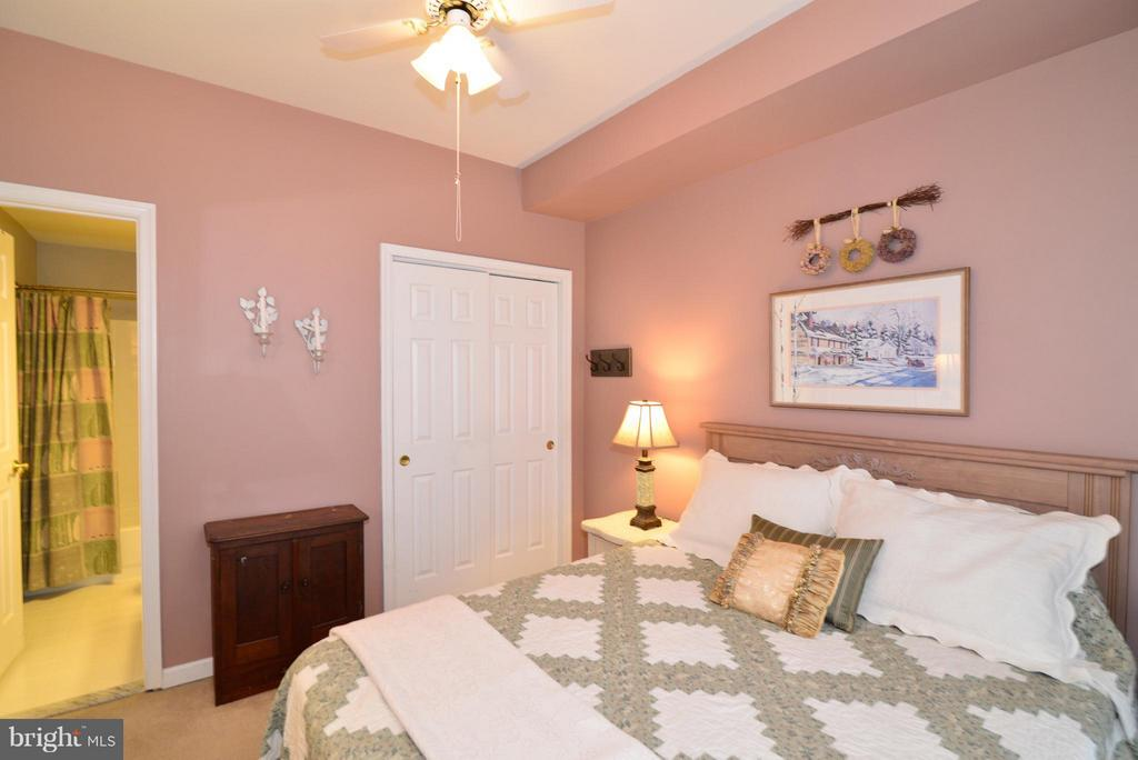 Great guest room with adjoining full bath... - 44019 LORDS VALLEY TER, ASHBURN