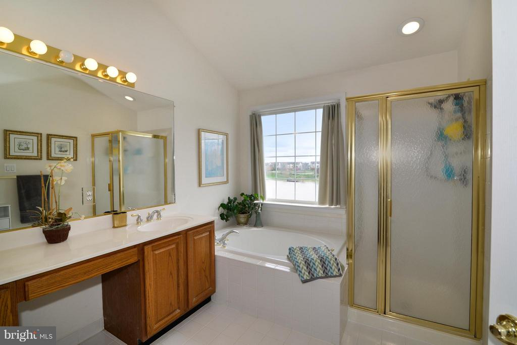 Separate tub, shower and dual sinks - 44019 LORDS VALLEY TER, ASHBURN