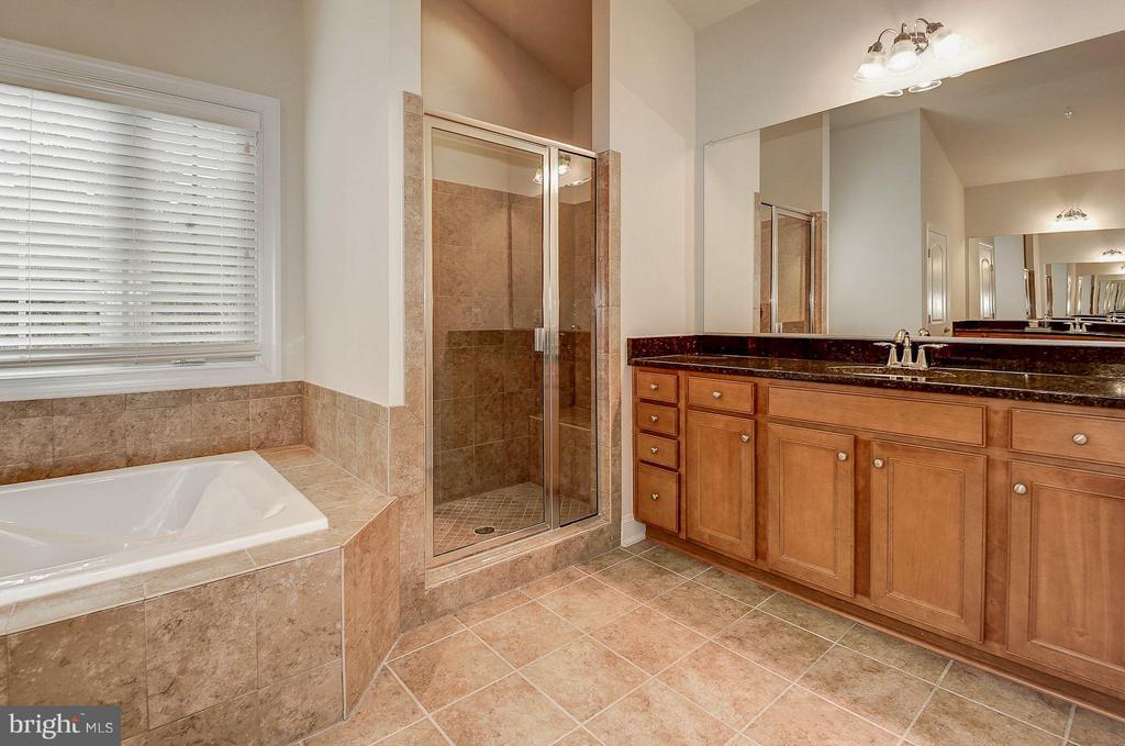 Separate shower & tub in master bath - 42709 ASHBURN TILLETT DR, BROADLANDS
