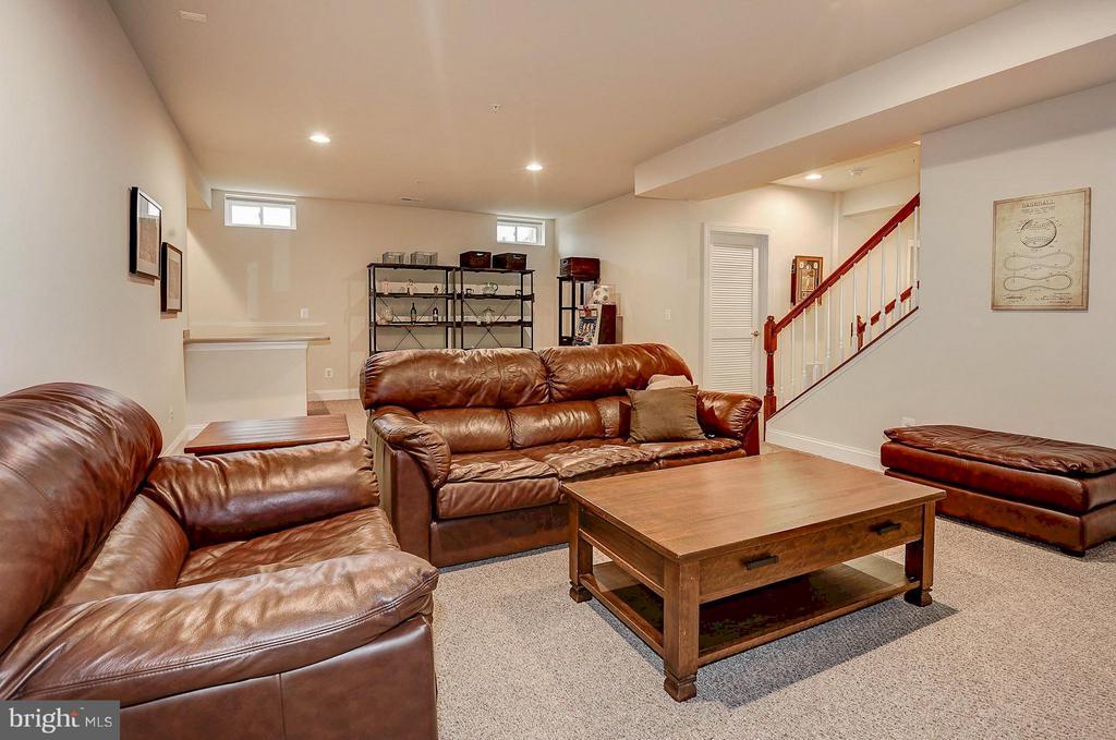 Spacious basement setup - 42709 ASHBURN TILLETT DR, BROADLANDS
