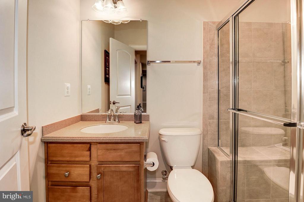 4.5 baths on 4 levels. Full bath in the basement. - 42709 ASHBURN TILLETT DR, BROADLANDS