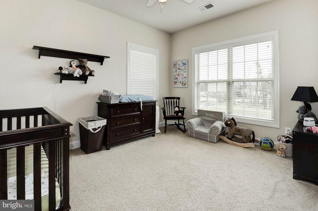 Excellent natural light and great closet space - 42709 ASHBURN TILLETT DR, BROADLANDS