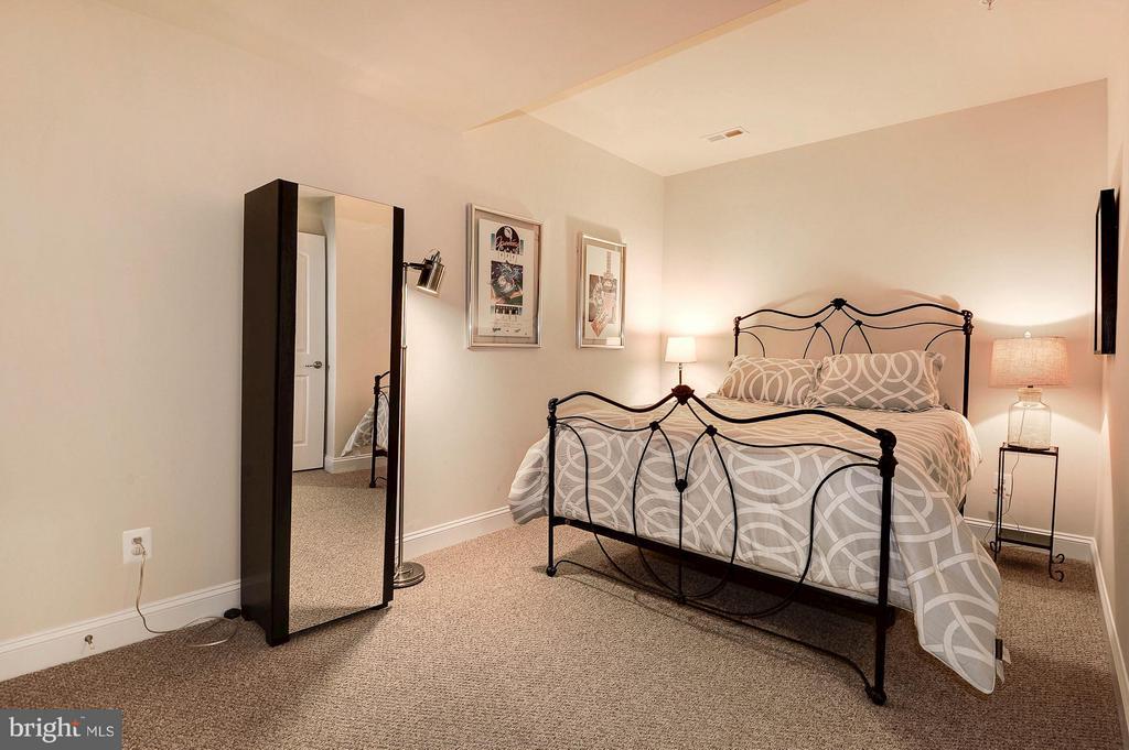 Additional 5th bedroom suite in the basement - 42709 ASHBURN TILLETT DR, BROADLANDS