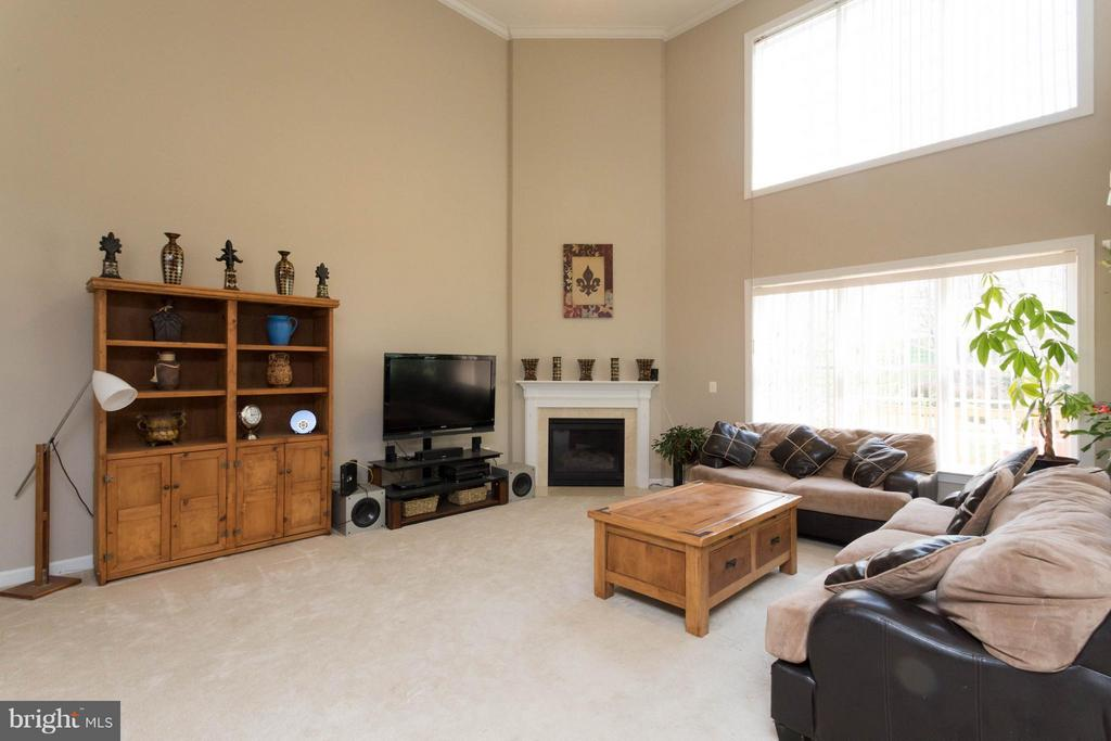 Family Room with Fireplace - 18621 KERILL RD, TRIANGLE