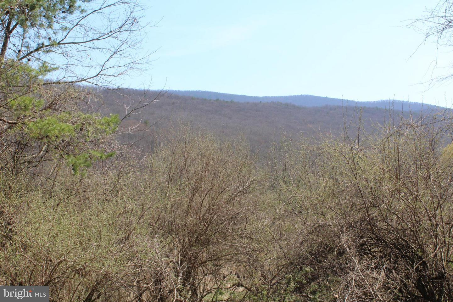 Land for Sale at Lot B12 Honeymoon Hollow Rd Lost City, West Virginia 26810 United States