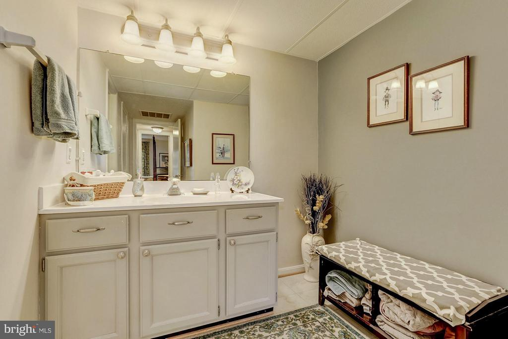 Large vanity area - 3123 PATRICK HENRY DR #322, FALLS CHURCH