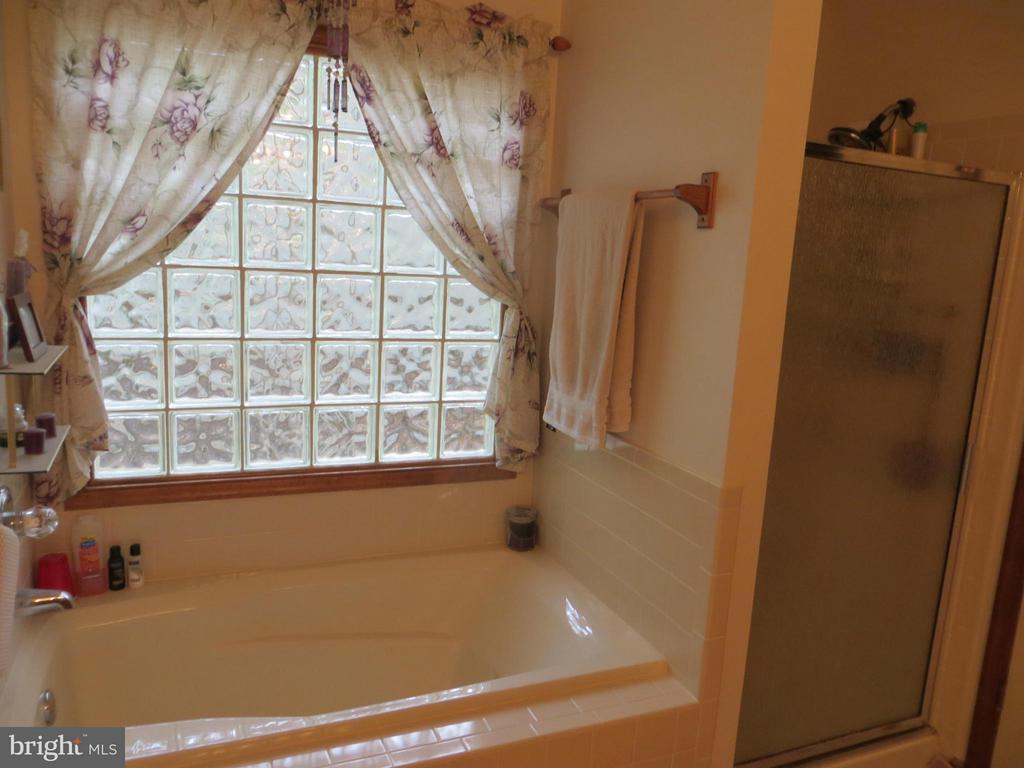 Bath (Master) Sep shower/Soak Tub - 209 CREEKSIDE DR, LOCUST GROVE