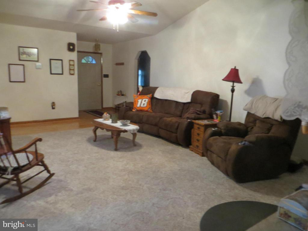 Living Room skylites & fireplace - 209 CREEKSIDE DR, LOCUST GROVE