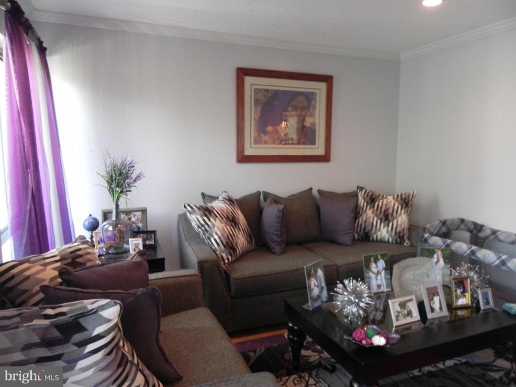 Family Room - 1810 OLD POST TER, WOODBRIDGE
