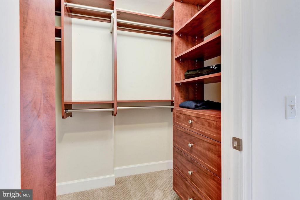 Walk in closet with built in storage - 3600 S GLEBE RD S #428W, ARLINGTON