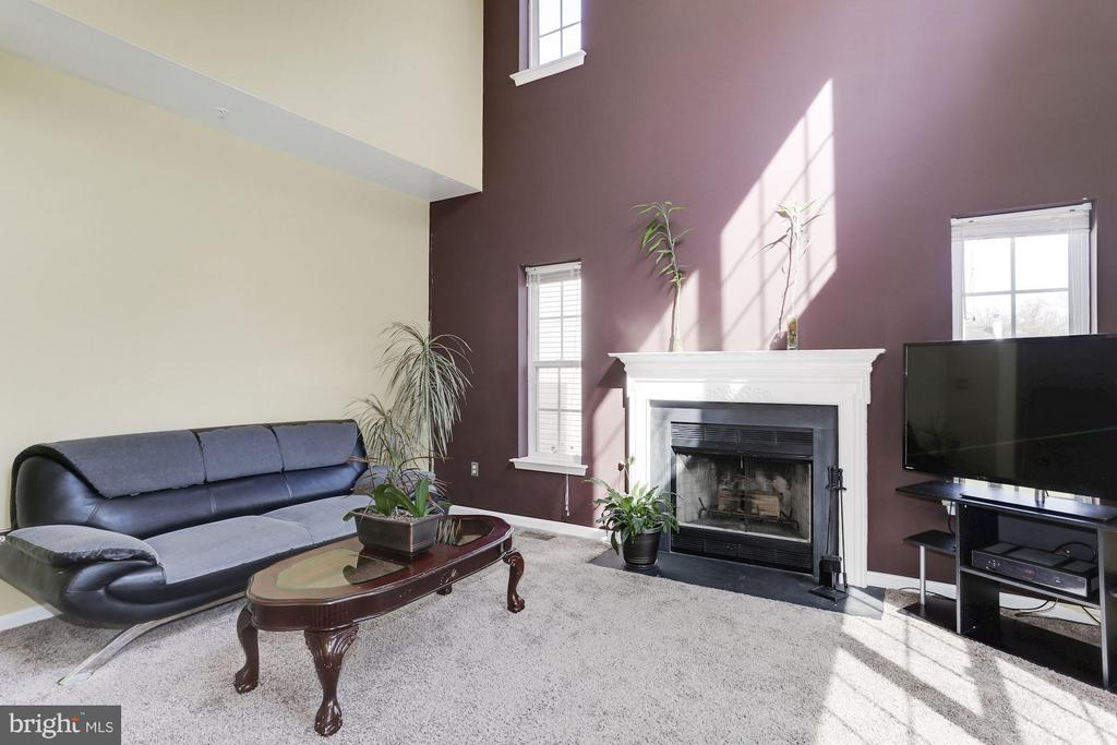 Family Room with wood Fireplace - 7809 ALLOWAY LN, BELTSVILLE
