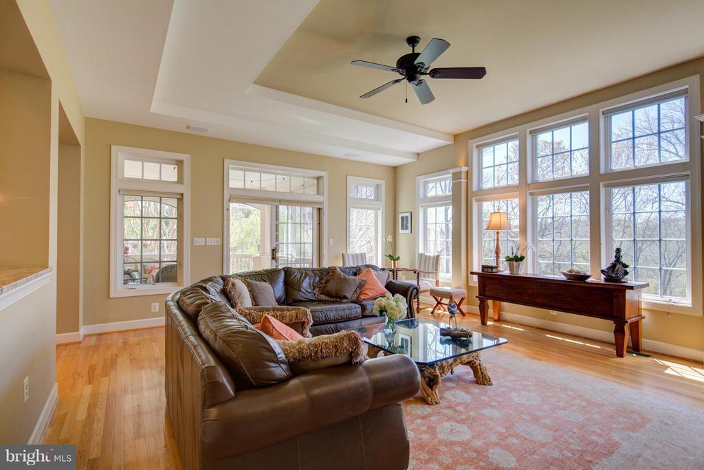 Family Room with transom windows and stone firepla - 43531 FIRESTONE PL, LEESBURG