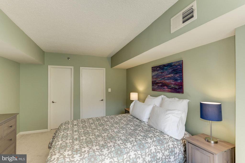 BEDROOM FEATURES A WALK-IN CLOSET! - 1001 RANDOLPH ST N #320, ARLINGTON