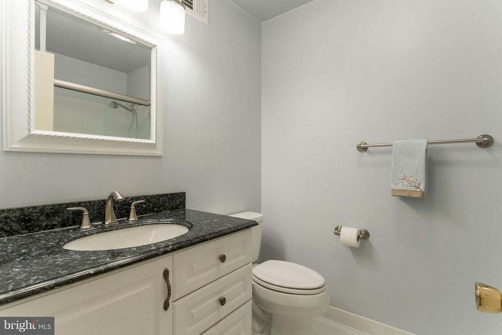 Bath (Master) - 6613 SADDLEHORN CT, BURKE