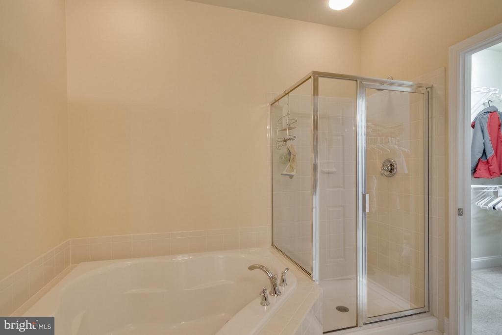 Bath (Master) - 14535 BARKHAM DR, WOODBRIDGE