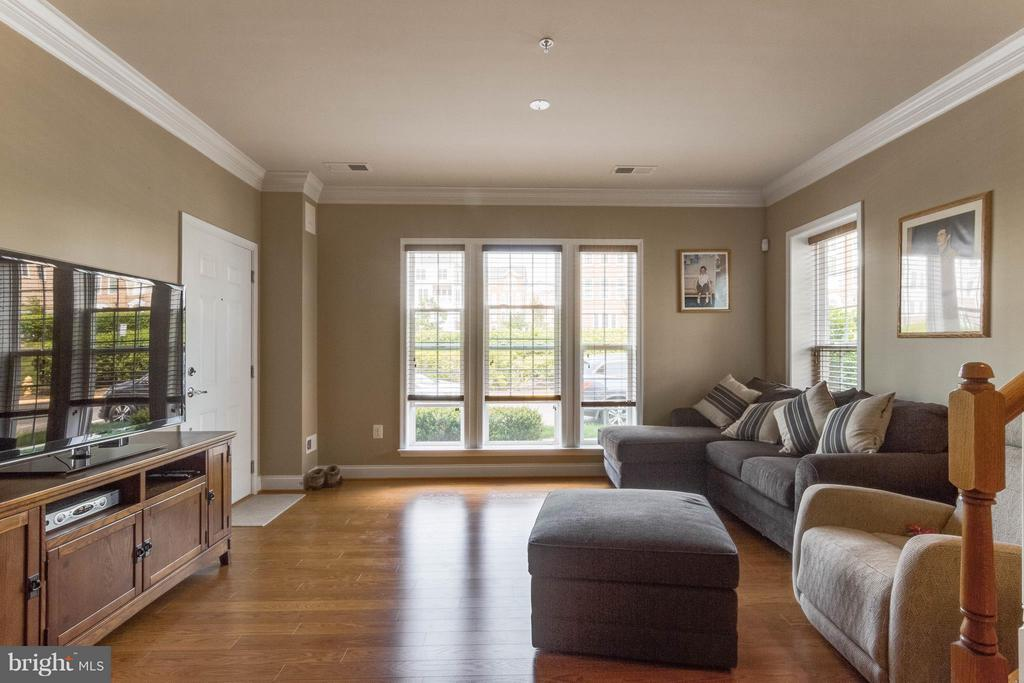 Living Room - 14535 BARKHAM DR, WOODBRIDGE