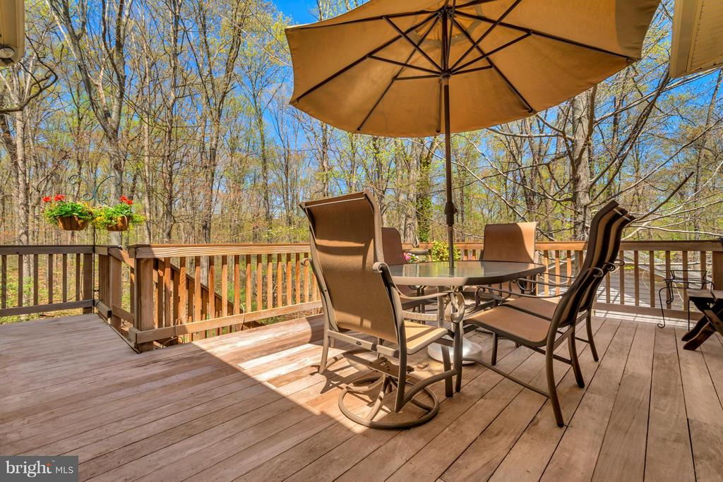 Brazilian Walnut Decking overlooking  parkland - 1101 EASTOVER PKWY, LOCUST GROVE