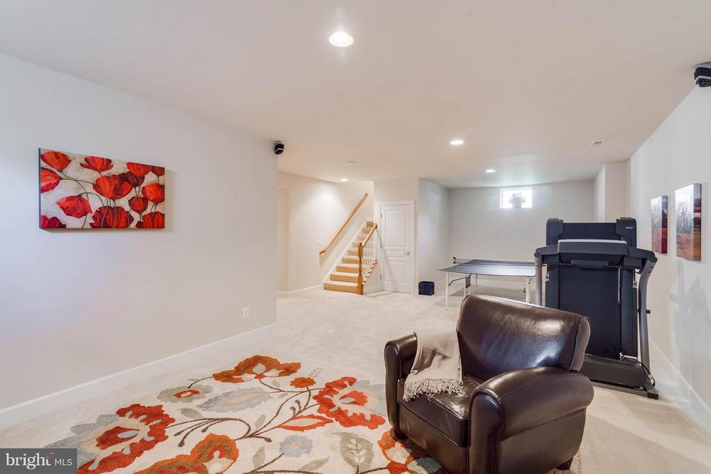 Basement - 23247 CHRISTOPHER THOMAS LN, ASHBURN