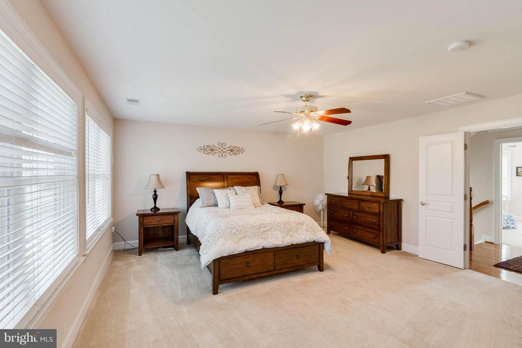 Bedroom (Master) - 23247 CHRISTOPHER THOMAS LN, ASHBURN