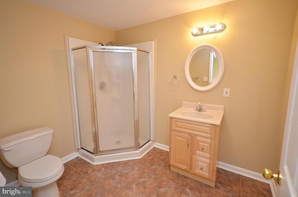Full Bath in Lower Level - 35791 CHAPEL HILL CT, ROUND HILL