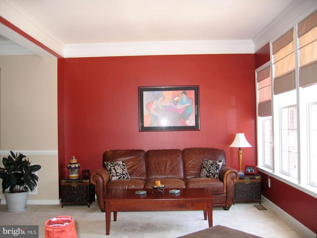 Living Room - 21934 WINDY OAKS SQ, BROADLANDS