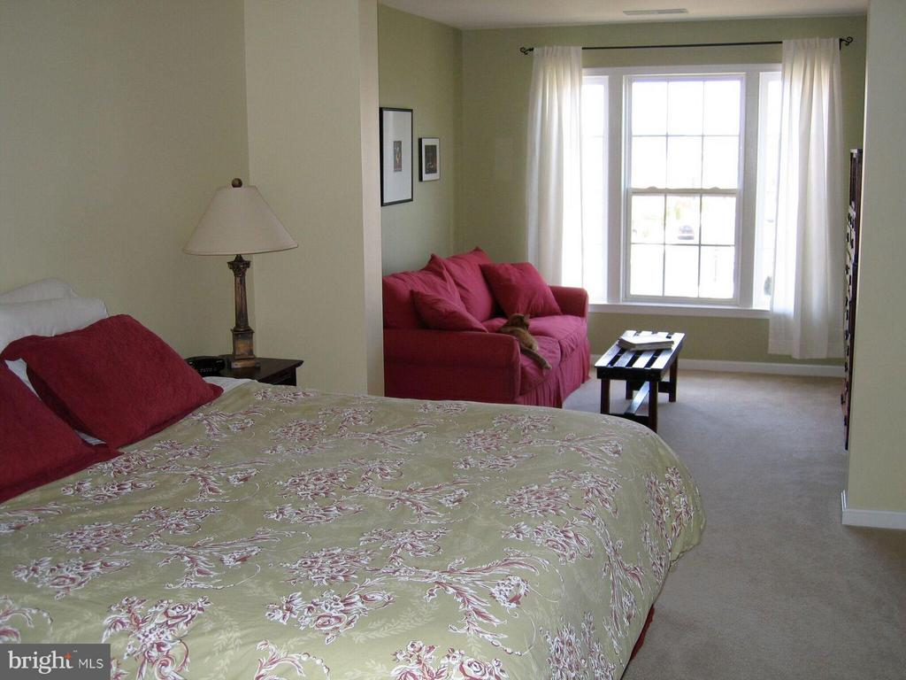 Master Bedroom with Sitting Room - 21934 WINDY OAKS SQ, BROADLANDS