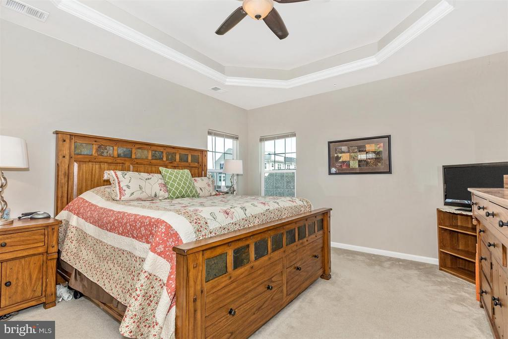 Gorgeous tray ceiling! - 5011 SMALL GAINS WAY, FREDERICK
