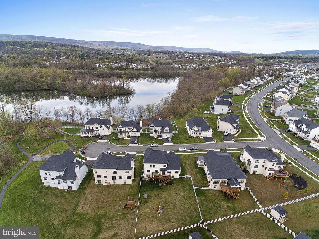 Elevated Lake View - 35943 SHREWSBURY CT, ROUND HILL