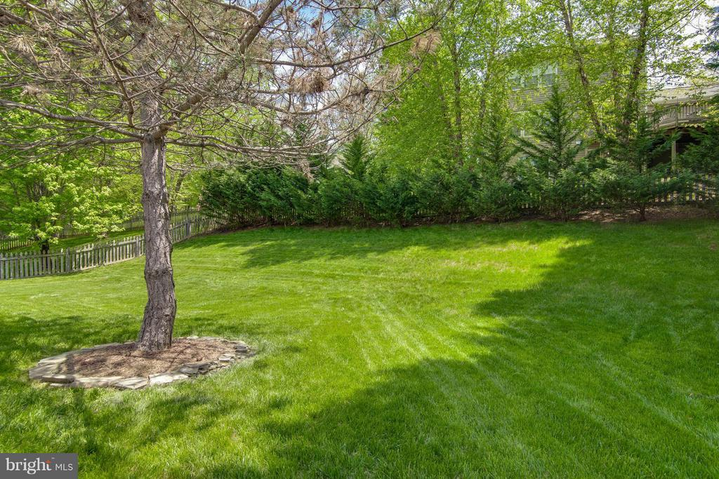 Fenced Backyard - 14951 SLIPPERY ELM CT, WOODBRIDGE