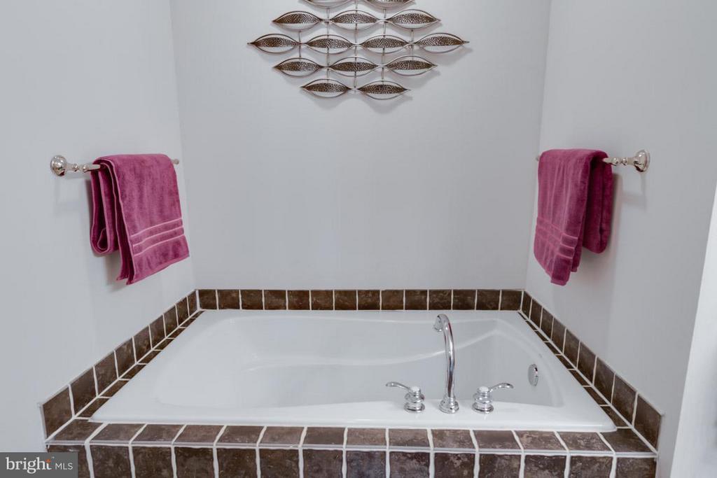Master Bath Soaking Tub - 22862 LIVINGSTON TER, ASHBURN