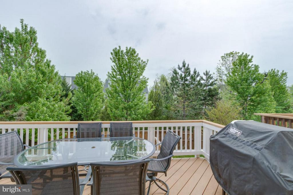 Deck with Rear View - 22862 LIVINGSTON TER, ASHBURN