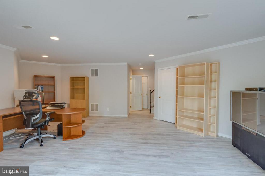 Lower Level Recreation Room - 22862 LIVINGSTON TER, ASHBURN