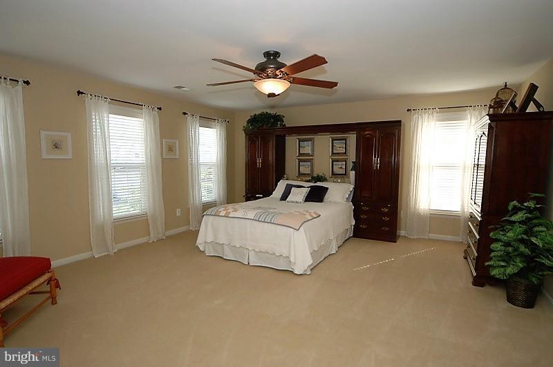 Spacious Master Bedroom - 14865 TIMOR CT, HAYMARKET