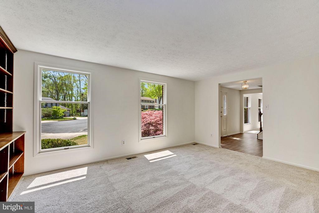 Living Room with built-ins & new carpet - 6247 GARRETSON ST, BURKE