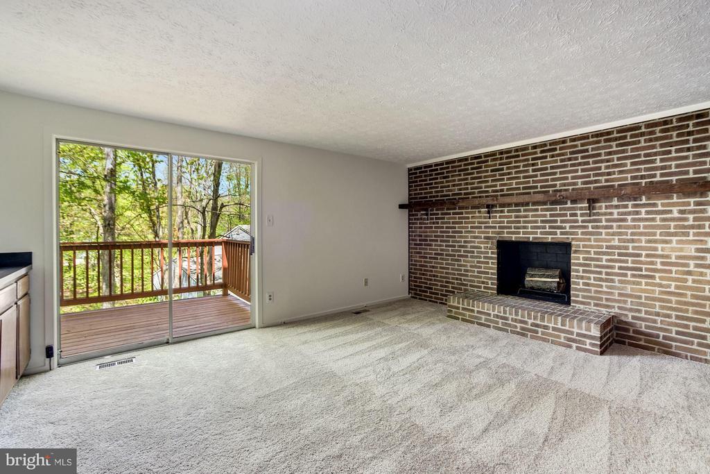 Family Room, new carpet - 6247 GARRETSON ST, BURKE
