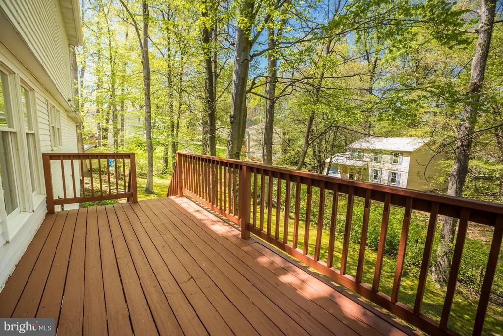 Deck, newly painted - 6247 GARRETSON ST, BURKE