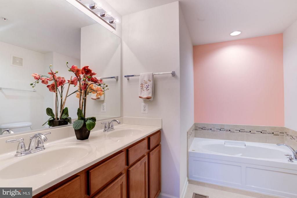 Master Bath with Jacuzzi - 15246 ROSEMONT MANOR DR, HAYMARKET