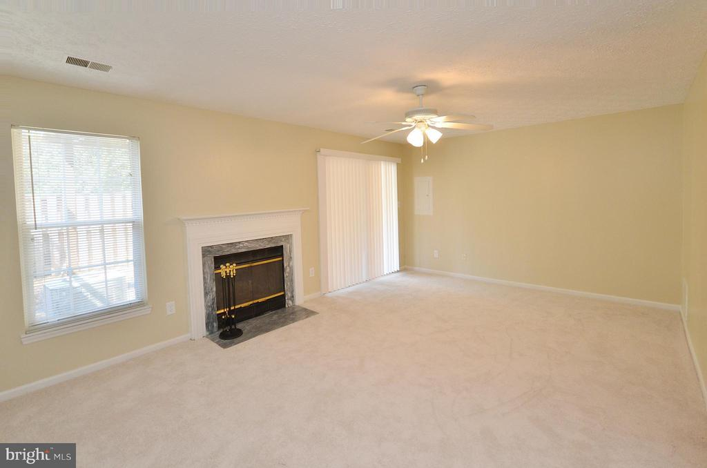 Basement with Fireplace - 14091 WINDING RIDGE LN, CENTREVILLE