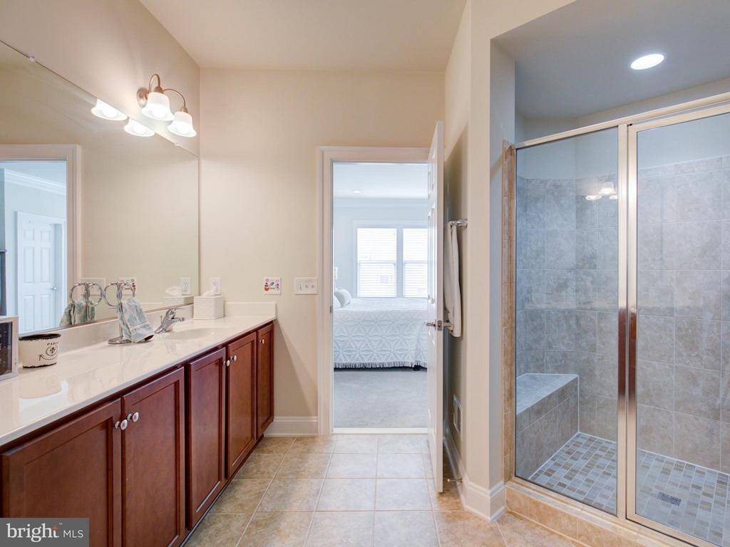 Bath (Master) - 42322 CHRISTOPHERS VIEW TER, ASHBURN