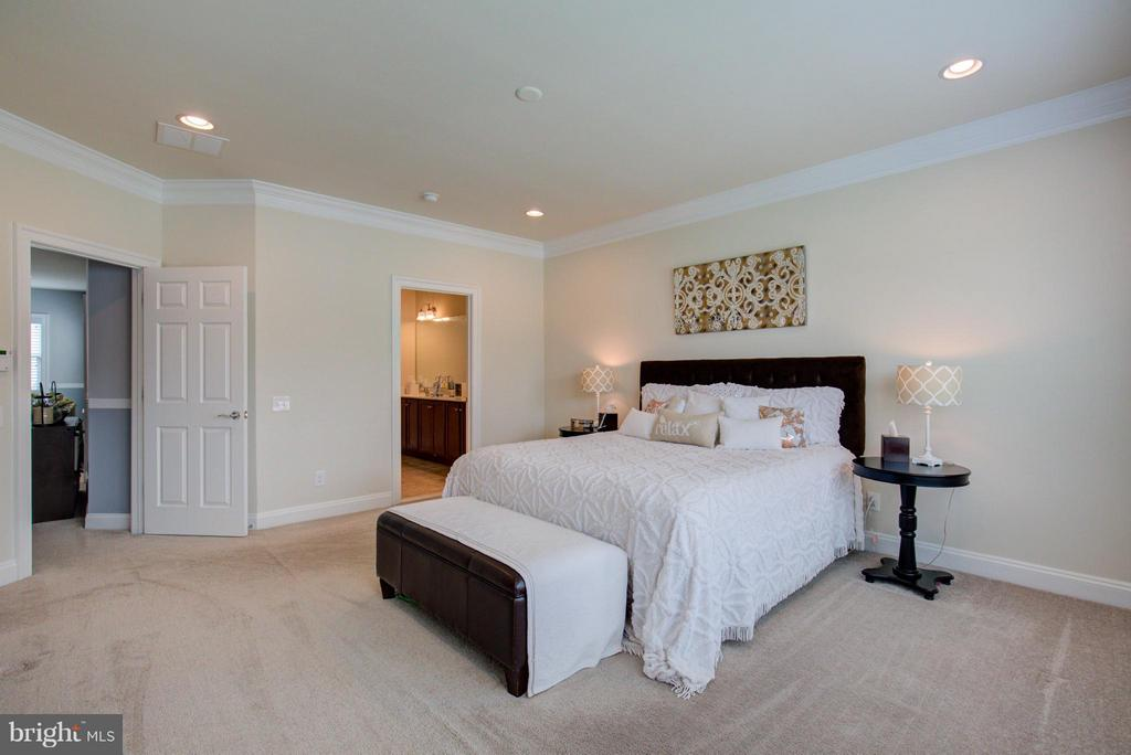 Bedroom (Master) - 42322 CHRISTOPHERS VIEW TER, ASHBURN