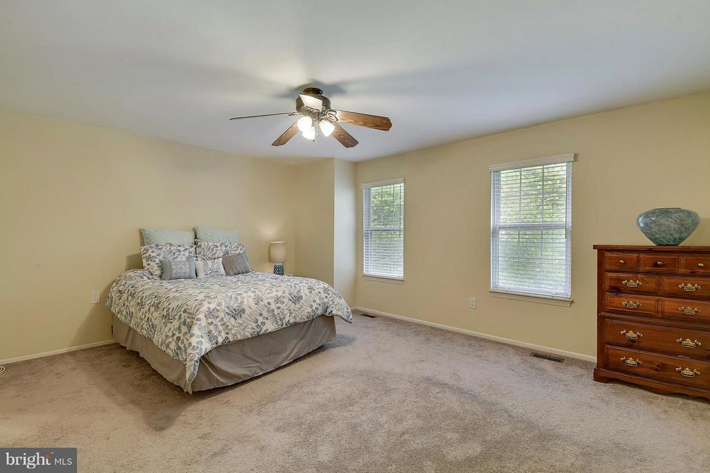 Bedroom (Master) - 3678 ALPEN GREEN WAY #21-228, BURTONSVILLE