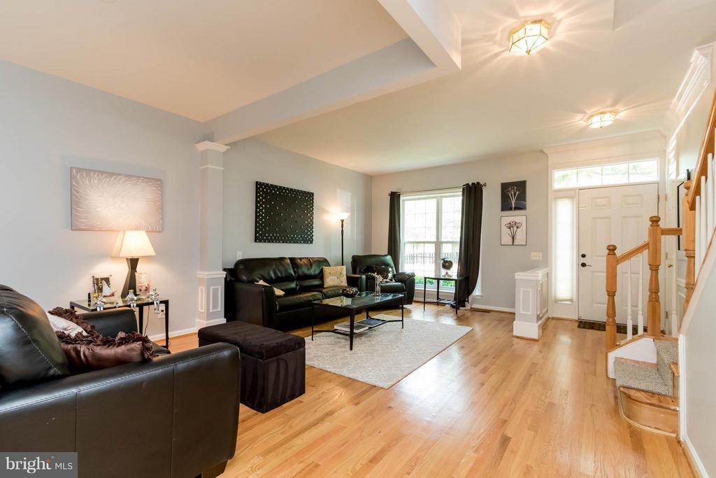 Living Room - 6337 BURGUNDY LEAF LN, ALEXANDRIA