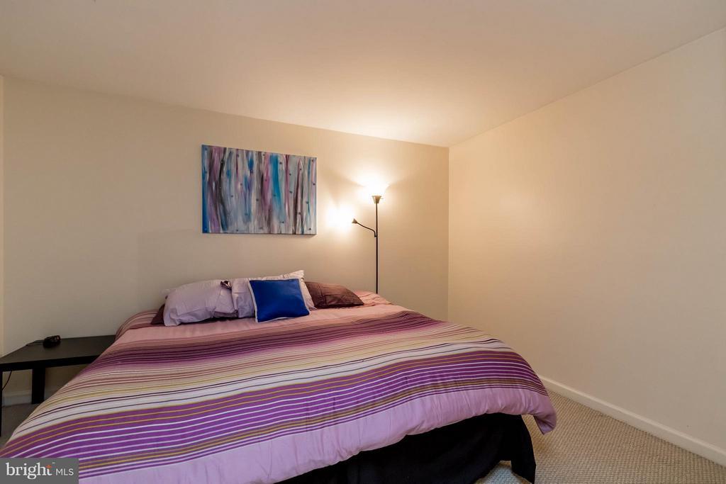 Lower Level Bedroom - 6337 BURGUNDY LEAF LN, ALEXANDRIA