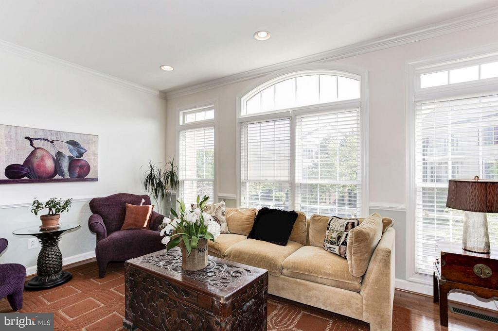 LVG RM - FLOOR-TO-CEILING WINDOWS! LOTS OF LIGHT! - 4572 FAIR VALLEY DR, FAIRFAX