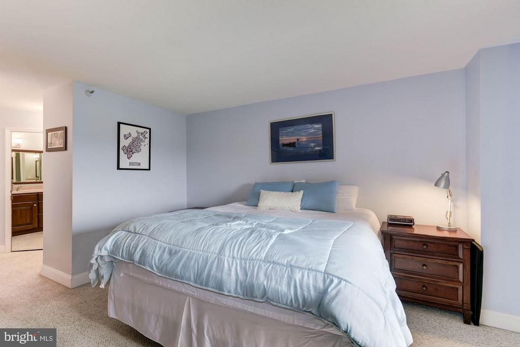 Bedroom (Master) - 1600 OAK ST N #708, ARLINGTON