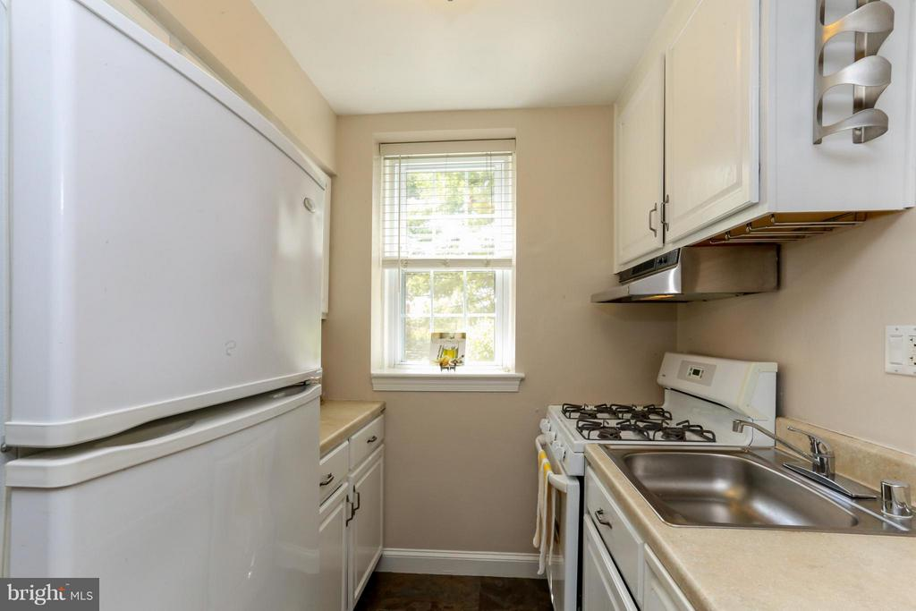 Bright sunny kitchen - 22 OLD GLEBE RD #5-D, ARLINGTON