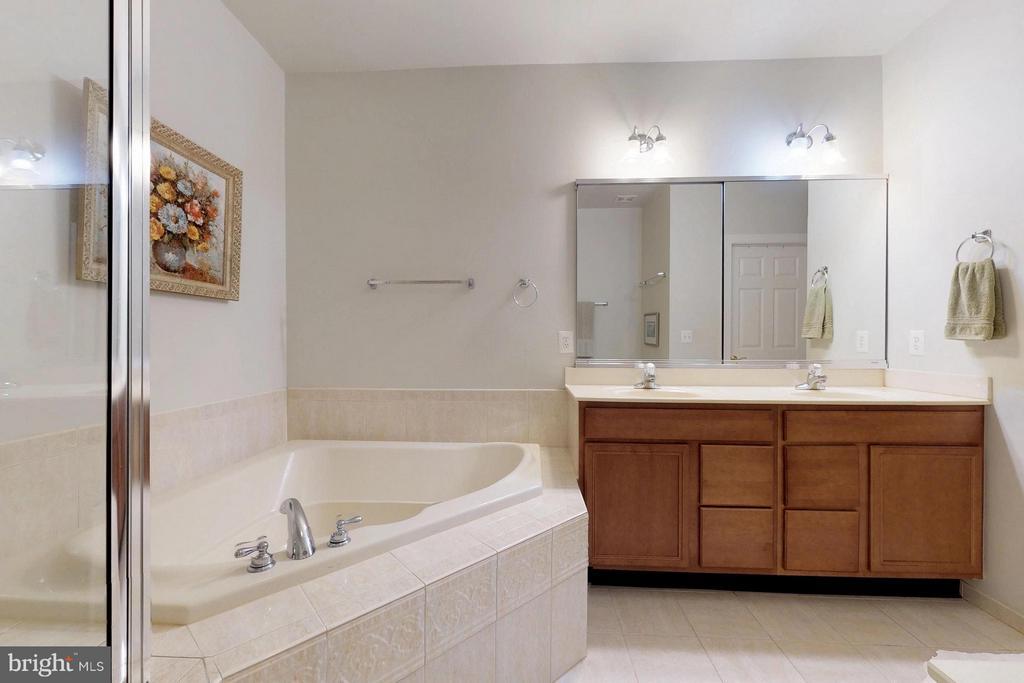 Bath (Master) - 5396 TREVINO DR, HAYMARKET